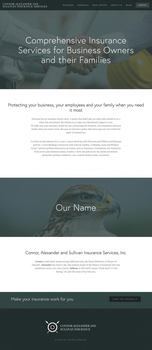 bay area web design squarepace insurance