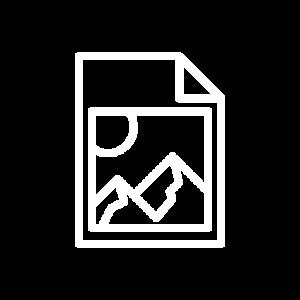 graphic design digital vector berkeley